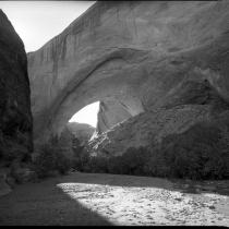 Lobo Arch