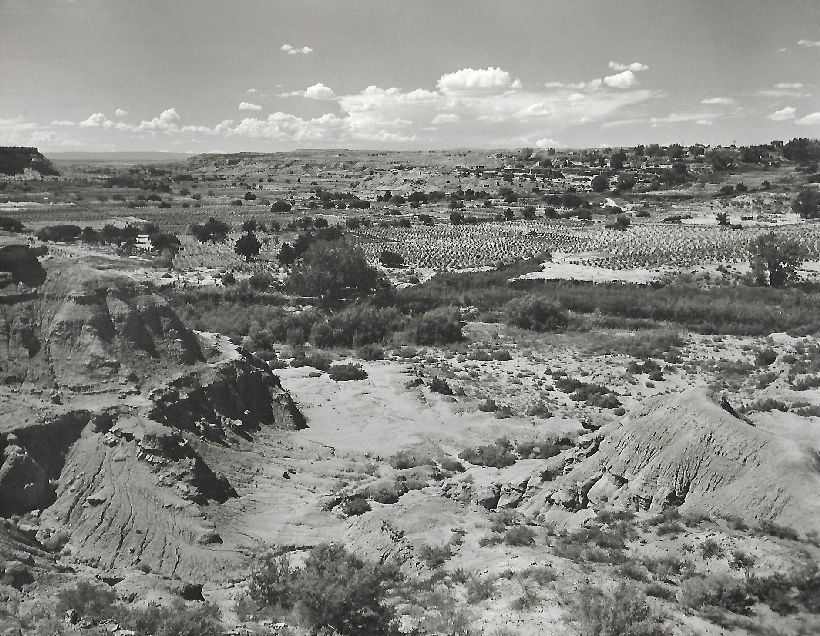 Navajo Farmland