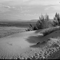 NN ON 820 Sand Dunes at Moenave