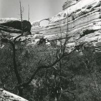 Castle Arch, Canyonlands
