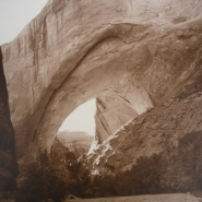 ONP VBW NXG Lobo Arch