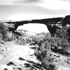 Owachomo at Natural Bridges