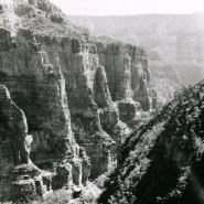Palisades on North Kiabab Trail 580