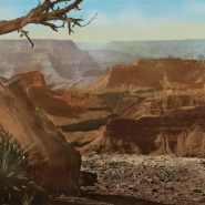 HT GC NXG Grand Canyon from Hopi Point