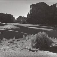 Sunny Dunes at Tsegito 580