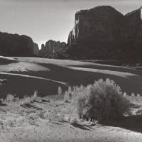 Sunny dunes at Tsegito